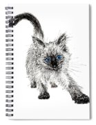 Pudsquiz Belina On The Prowl  Spiral Notebook