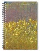 Pueblo Downtown--river Grasses Spiral Notebook