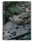 Puerto Rico Water Spiral Notebook
