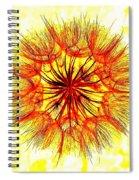 Puff Ball Abstract Spiral Notebook