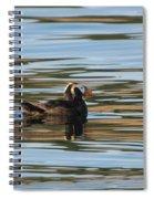 Puffin Reflected Spiral Notebook