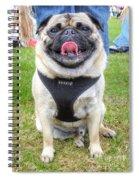 Pug Portrait Spiral Notebook