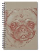 Pug Square Spiral Notebook