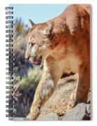 Puma Mountain Lion Nature Wear Spiral Notebook