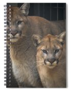 Puma Pair Spiral Notebook