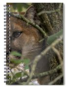 Puma Stalking Spiral Notebook