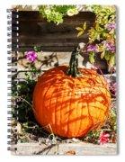 Pumpkin And Flowers Spiral Notebook