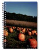 Pumpkin Field Shadows Spiral Notebook
