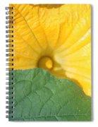 Pumpkin Flower Spiral Notebook