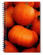 Pumpkin Harvest Spiral Notebook
