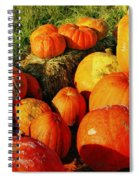 Pumpkin Meeting Spiral Notebook
