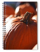 Pumpkin Patch Farm Spiral Notebook
