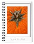 Pumpkin Stem Poster Spiral Notebook