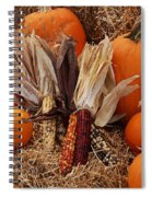 Pumpkins And Corn Spiral Notebook