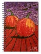 Pumpkins At The Dock Spiral Notebook