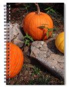 Pumpkins For October  Spiral Notebook