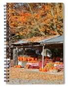 Pumpkins For Sale Spiral Notebook