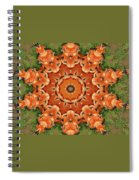 Pumpkins Galore Spiral Notebook