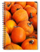 Pumpkins Spiral Notebook