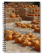 Pumpkins On Bales Spiral Notebook