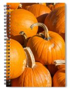Pumpkins Pile 1 Spiral Notebook