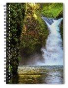 Punch Bowl Falls, Oregon Spiral Notebook