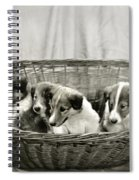 Puppies Of The Past Spiral Notebook