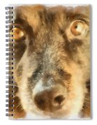 Puppy Eyes Spiral Notebook