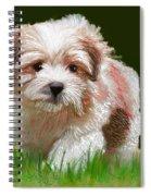 Puppy In High Grass Spiral Notebook