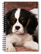 Puppy With Ball Spiral Notebook