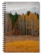 Purcell Gold Spiral Notebook
