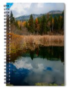 Purcells Reflected Spiral Notebook