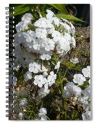 Pure Beauty Spiral Notebook