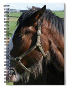 Pure Beauty Spiral Notebook