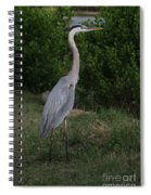 Pure Natural Beauty Spiral Notebook