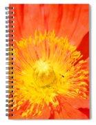 Pure Poppy Sunshine Spiral Notebook