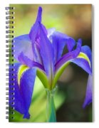 Pure Simple Beautiful Spiral Notebook
