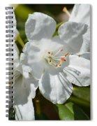 Purest White Spiral Notebook