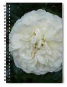 Purity And Perfection Spiral Notebook