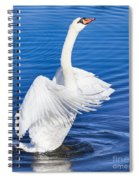 Purity Spiral Notebook