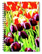 Purple And Peach Tulips 2 Spiral Notebook