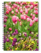 Purple And Pink Tulips In Canberra In Spring Spiral Notebook