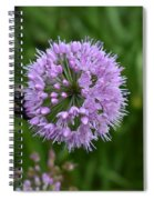 Purple And The Bee Spiral Notebook