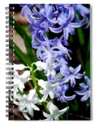 Purple And White Hyacinth Spiral Notebook