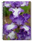 Purple And White Iris Layers Spiral Notebook