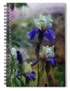 Purple And White Irises 6647 Dp_2 Spiral Notebook