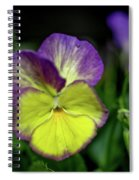 Purple And Yellow Bokeh Spiral Notebook
