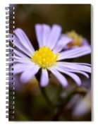 Purple And Yellow Flower Spiral Notebook