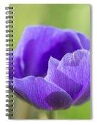 Purple Anemone Flower Spiral Notebook