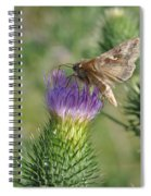Purple Attratcion Spiral Notebook